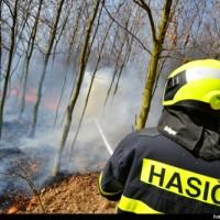 požár v přírodě